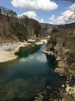 Shogawa river in early spring