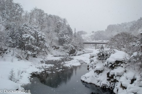 Shogawa river in winter